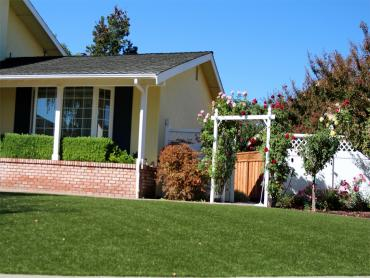 Artificial Grass Photos: Artificial Grass Carpet Necedah, Wisconsin Rooftop, Front Yard Landscaping