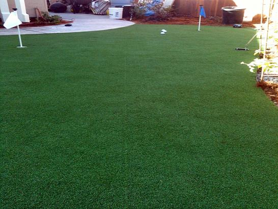 Artificial Grass Photos: Artificial Grass Carpet Potter Lake, Wisconsin Putting Green Carpet, Backyard Landscape Ideas