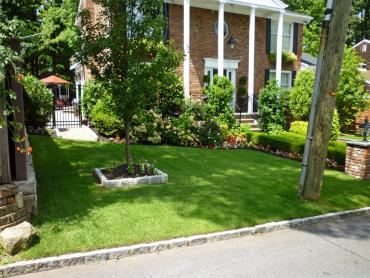 Artificial Grass Photos: Artificial Grass Maribel, Wisconsin Lawns, Front Yard Ideas