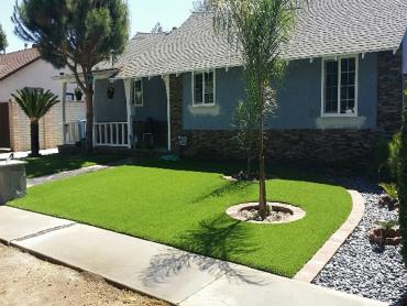 Artificial Grass Photos: Artificial Grass Oconto, Wisconsin Roof Top, Small Front Yard Landscaping