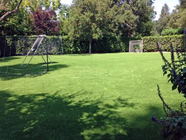 Artificial Grass Photos: Artificial Lawn Chilton, Wisconsin Lawn And Garden, Backyard Garden Ideas