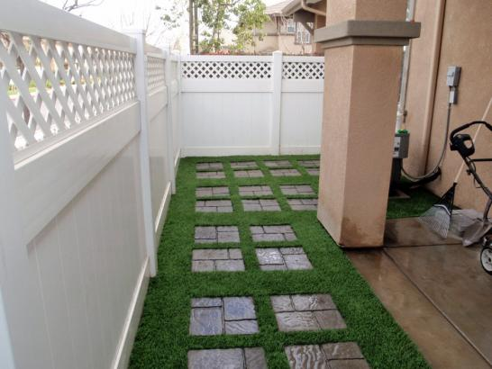 Artificial Grass Photos: Artificial Lawn Marquette, Wisconsin Garden Ideas, Backyards