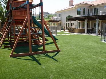 Artificial Grass Photos: Artificial Turf Cost Campbellsport, Wisconsin City Landscape, Beautiful Backyards