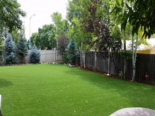 Artificial Grass Photos: Artificial Turf Cost Evansville, Wisconsin Dog Run, Backyard Landscaping