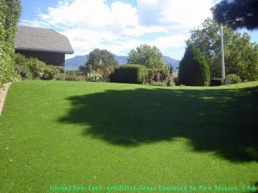 Artificial Turf Cost West Allis, Wisconsin Grass For Dogs, Backyard artificial grass