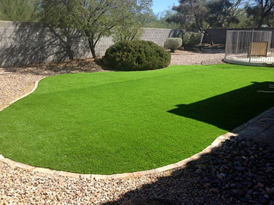 Artificial Grass Photos: Artificial Turf Installation Caledonia, Wisconsin Landscaping Business, Small Backyard Ideas