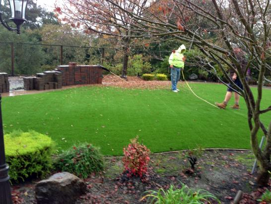 Artificial Grass Photos: Artificial Turf West Milwaukee, Wisconsin Garden Ideas, Backyard Ideas