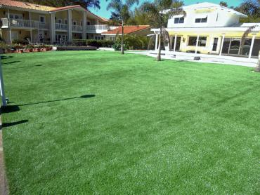 Artificial Grass Photos: Best Artificial Grass Neenah, Wisconsin Landscape Ideas, Pool Designs