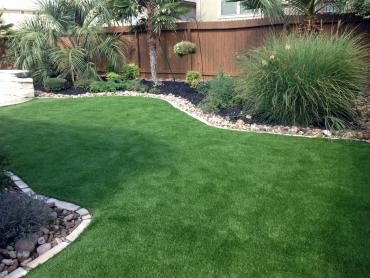 Artificial Grass Photos: Best Artificial Grass Northport, Wisconsin Garden Ideas, Backyard Garden Ideas