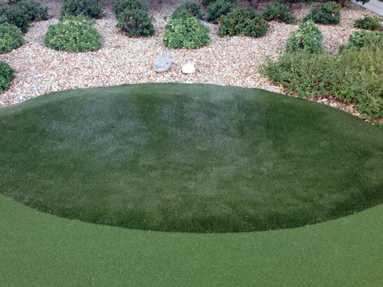 Artificial Grass Photos: Fake Grass Carpet Auburndale, Wisconsin Putting Green Turf