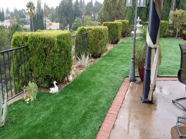 Artificial Grass Photos: Fake Grass Carpet Thornton, Wisconsin Landscape Photos, Backyard Landscaping Ideas