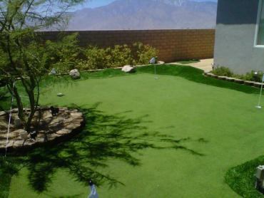 Artificial Grass Photos: Fake Grass Green Bay, Wisconsin Landscape Ideas, Backyard Landscaping
