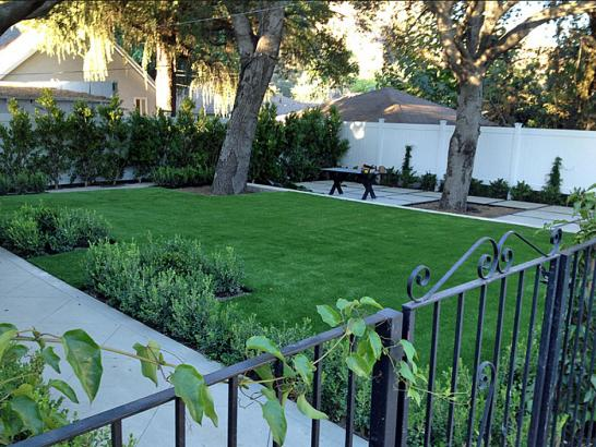 Artificial Grass Photos: Fake Grass Mount Calvary, Wisconsin Design Ideas, Landscaping Ideas For Front Yard
