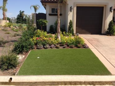 Artificial Grass Photos: Fake Turf Blanchardville, Wisconsin Home And Garden, Small Front Yard Landscaping