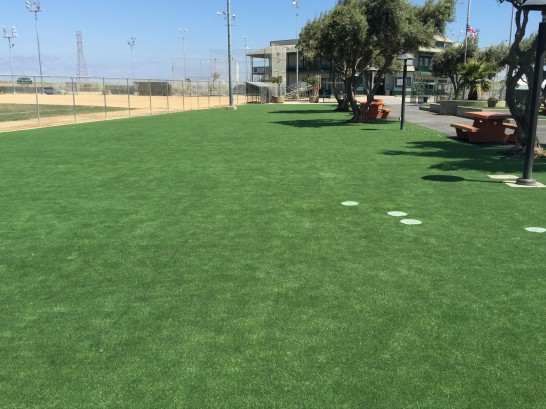 Artificial Grass Photos: Fake Turf Dyckesville, Wisconsin Landscaping, Recreational Areas