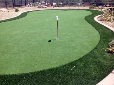 Artificial Grass Photos: Fake Turf Legend Lake, Wisconsin Home And Garden, Backyard Landscaping Ideas