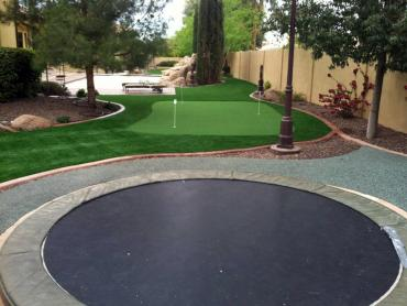 Artificial Grass Photos: Fake Turf Poynette, Wisconsin Lawn And Garden, Backyard Ideas
