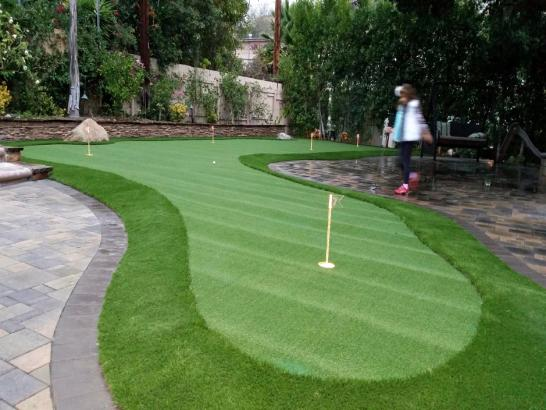 Artificial Grass Photos: Faux Grass Wilmot, Wisconsin Best Indoor Putting Green, Backyard Makeover