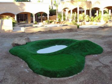 Artificial Grass Photos: Faux Grass Winchester, Wisconsin Indoor Putting Greens, Commercial Landscape
