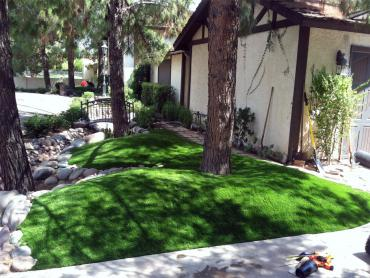 Artificial Grass Photos: Grass Installation Paddock Lake, Wisconsin, Front Yard Landscape Ideas