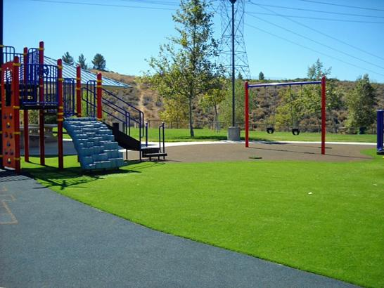 Artificial Grass Photos: Grass Turf Cedar Grove, Wisconsin Lawns, Parks