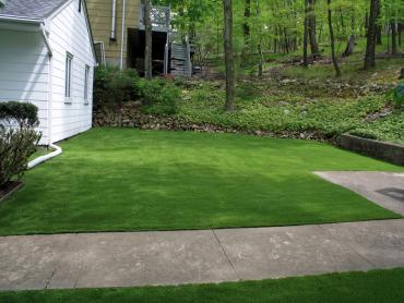 Artificial Grass Photos: Grass Turf Combined Locks, Wisconsin Design Ideas, Front Yard Landscaping Ideas