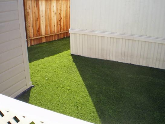 Artificial Grass Photos: Green Lawn Beaver Dam, Wisconsin Lawn And Garden, Small Backyard Ideas