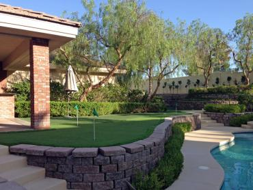 Artificial Grass Photos: Green Lawn Dane, Wisconsin Paver Patio, Backyard Designs