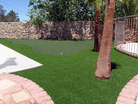 Artificial Grass Photos: Green Lawn Kekoskee, Wisconsin Best Indoor Putting Green, Backyard Ideas