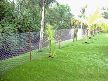 Artificial Grass Photos: How To Install Artificial Grass Portage, Wisconsin City Landscape, Backyard
