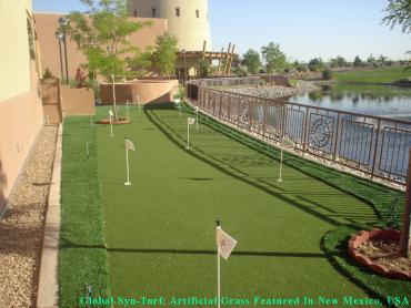 How To Install Artificial Grass Saint Francis, Wisconsin Golf Green, Backyard Design artificial grass