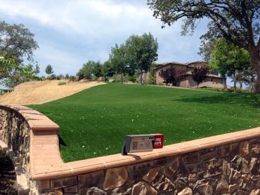 Artificial Grass Photos: Installing Artificial Grass Bonduel, Wisconsin Design Ideas, Landscaping Ideas For Front Yard