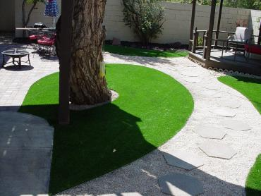 Artificial Grass Photos: Installing Artificial Grass Brodhead, Wisconsin Roof Top, Beautiful Backyards