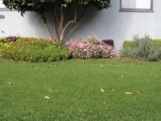 Artificial Grass Photos: Installing Artificial Grass Lohrville, Wisconsin Lawn And Garden, Front Yard Landscaping