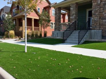 Installing Artificial Grass Menomonee Falls, Wisconsin Design Ideas, Front Yard Ideas artificial grass