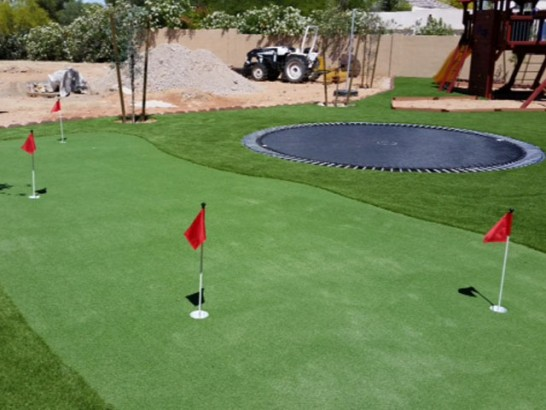 Artificial Grass Photos: Lawn Services Algoma, Wisconsin Golf Green, Backyard Ideas