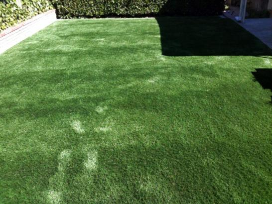 Artificial Grass Photos: Lawn Services Greenfield, Wisconsin Dogs, Small Backyard Ideas