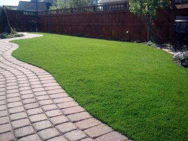 Artificial Grass Photos: Lawn Services Little Kohler, Wisconsin Dogs, Backyards