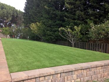Artificial Grass Photos: Lawn Services Ontario, Wisconsin Lawn And Garden, Beautiful Backyards