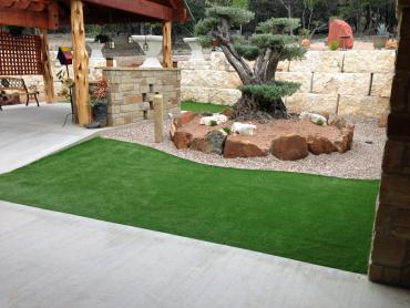Artificial Grass Photos: Lawn Services Seymour, Wisconsin Landscape Ideas, Backyard Landscaping
