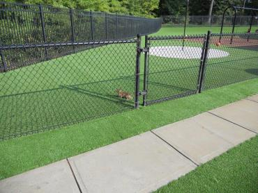 Artificial Grass Photos: Lawn Services Windsor, Wisconsin Landscaping Business, Recreational Areas