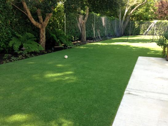 Artificial Grass Photos: Outdoor Carpet Bell Center, Wisconsin Artificial Grass For Dogs