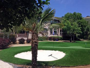 Artificial Grass Photos: Outdoor Carpet Eagle Lake, Wisconsin Landscape Photos, Front Yard