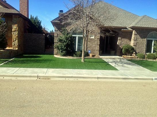 Artificial Grass Photos: Outdoor Carpet Wind Point, Wisconsin Landscape Design, Front Yard Landscaping Ideas