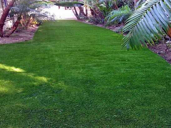 Artificial Grass Photos: Plastic Grass Sharon, Wisconsin Landscaping, Backyards