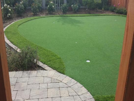 Artificial Grass Photos: Synthetic Grass Cost Cedarburg, Wisconsin Best Indoor Putting Green, Backyard Designs