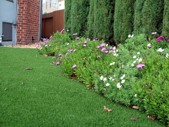 Artificial Grass Photos: Synthetic Grass Cost Footville, Wisconsin Landscape Design, Front Yard