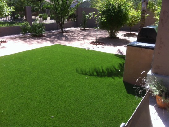 Artificial Grass Photos: Synthetic Grass Cost Westfield, Wisconsin Landscaping Business, Dogs Runs