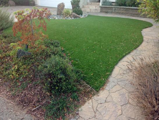 Artificial Grass Photos: Synthetic Grass Fort Atkinson, Wisconsin Lawn And Landscape, Beautiful Backyards