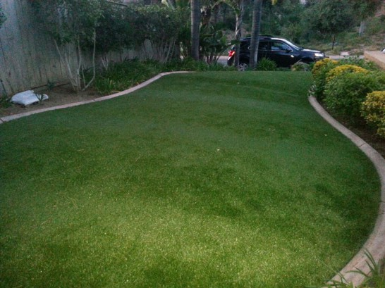Artificial Grass Photos: Synthetic Grass Plain, Wisconsin Rooftop, Front Yard